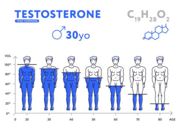 testostérone age